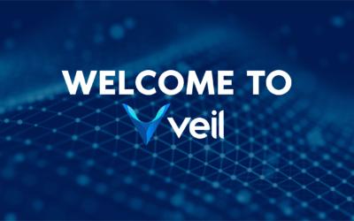 Exclusive interview: Veil